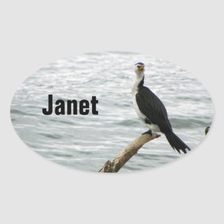 Pied Shag Waits For Fish Oval Sticker