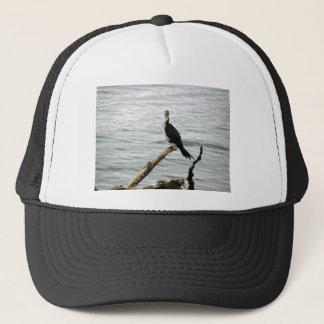 Pied Shag Waits For Fish Trucker Hat