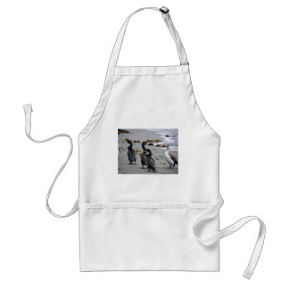 Pied Shags Adult Apron