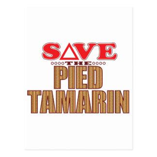Pied Tamarin Save Postcard