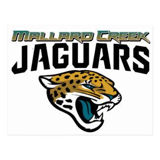 Piedmont Youth Football Mallard Creek Jaguars Postcard