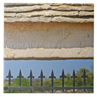 Piedra de la puerta y de la llave tallada con Mont Azulejo Cuadrado Grande