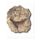 Piedra de los alces postal