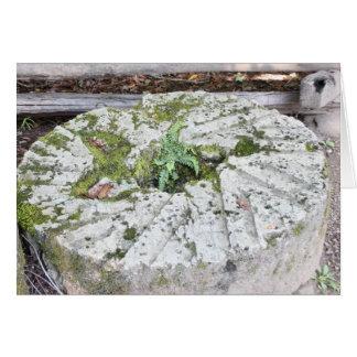 Piedra de pulido con el helecho tarjeta de felicitación