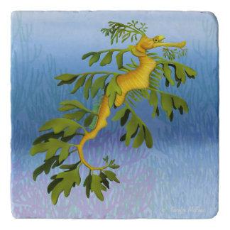 Piedra frondosa Trivet del Seahorse del dragón del Salvamanteles
