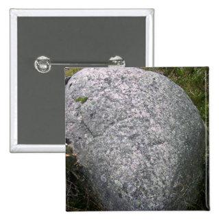 Piedra gris con el musgo y los liquenes en Landsca Pin