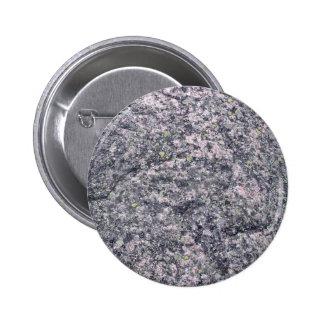 Piedra gris con el musgo y los liquenes pin