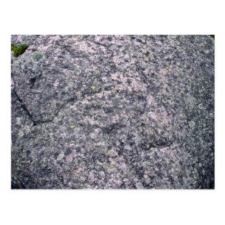 Piedra gris con el musgo y los liquenes postal