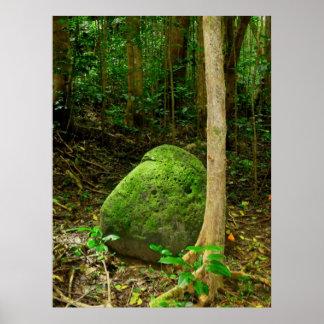 piedra Musgo-cubierta Posters