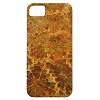 Piedra preciosa natural coralina fosilizada del iPhone 5 Case-Mate protectores