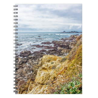 Piedras Blancas Lighthouse View Journals