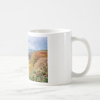 Piedras Blancas Lighthouse View Coffee Mugs