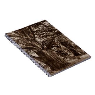 Piedras del tejo del cementerio de la genealogía spiral notebook