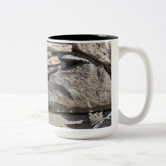 Piedras grandes y pequeñas en una pared taza de dos tonos