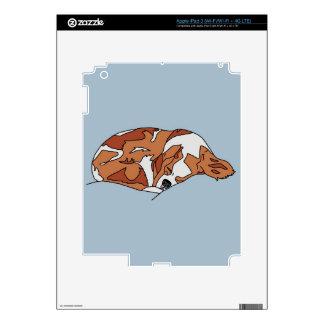 Piel arrogante del cojín del perro de aguas de rey iPad 3 skin