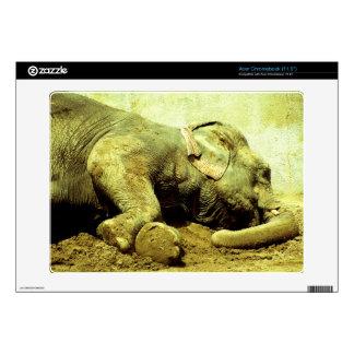 Piel asiática de Elefante-Acer Chromebook Acer Chromebook Skin