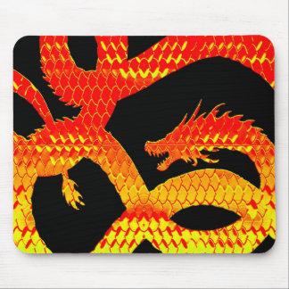 Piel B del dragón Mousepads