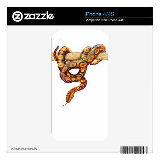 Piel brasileña de Zazzle de la serpiente de la boa iPhone 4 Skin