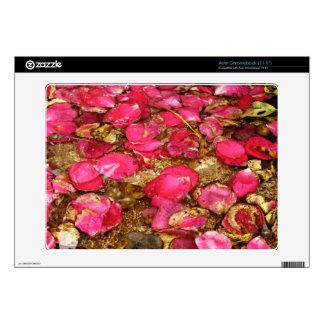 Piel caida de Acer Chromebook de los rosas Acer Chromebook Calcomanía