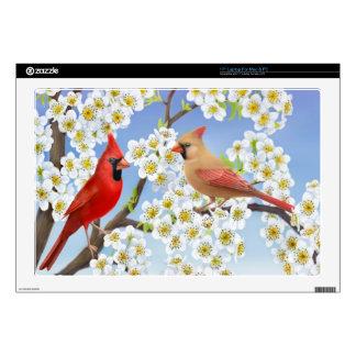 Piel cardinal septentrional del ordenador portátil portátil calcomanías