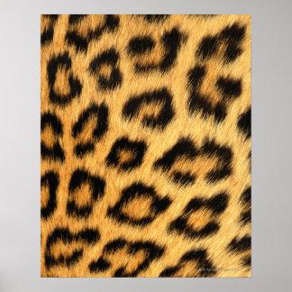Piel de Jaguar Posters