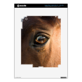 Piel de la cabeza de caballos iPad3 Pegatina Skin Para iPad 3