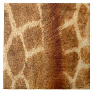 Piel de la jirafa teja