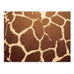 Piel de la jirafa postales