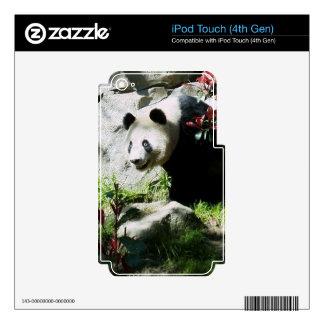 Piel de la sonrisa de la panda calcomanías para iPod touch 4G