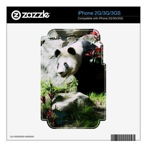 Piel de la sonrisa de la panda skin para el iPhone 2G