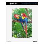 Piel de la tableta de los Macaws del escarlata (el Skins Para NOOK
