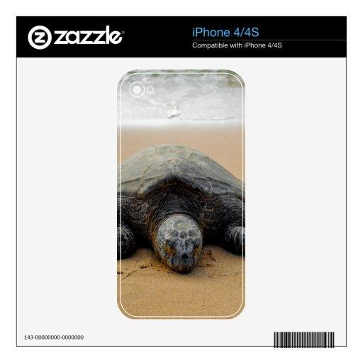 Piel de la tortuga de mar skins para iPhone 4