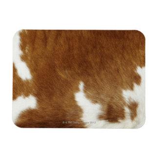 Piel de la vaca imán flexible