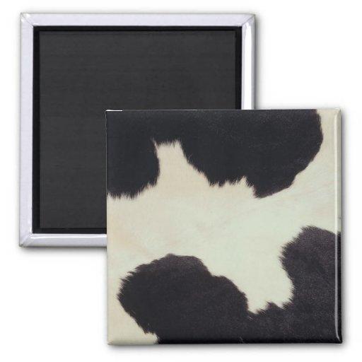Piel de la vaca imán cuadrado