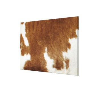 Piel de la vaca lona envuelta para galerias