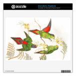 Piel de pájaros del loro de Goulds Lorikeet BlackBerry Skins