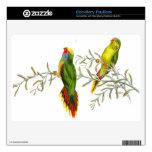 Piel de pájaros del loro de Goulds Lorikeet BlackBerry Calcomanía