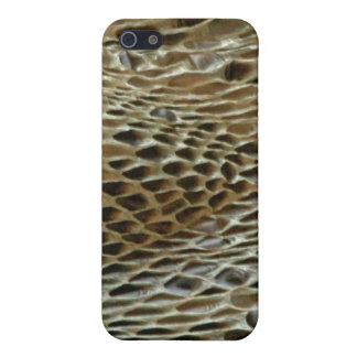 Piel de serpiente Boa2 iPhone 5 Carcasas