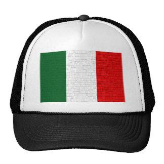 Piel de serpiente de la bandera de Italia Gorras De Camionero