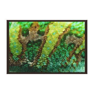 Piel del camaleón lona estirada galerías