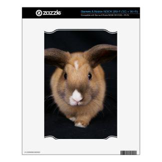 Piel del escondrijo del conejo de conejito de MHRR Skins Para NOOK