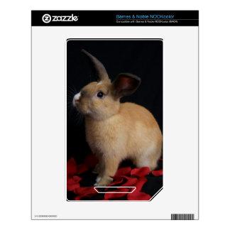 Piel del escondrijo del conejo de conejito de MHRR NOOK Color Calcomanías