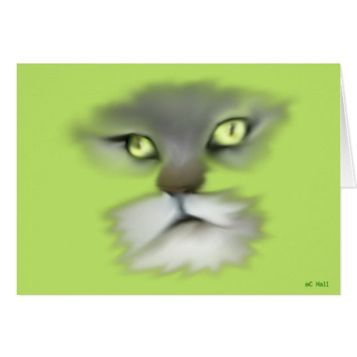 Piel del gato del gatito del maullido del coon de  tarjetas