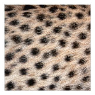 piel del guepardo o plantilla manchada negro de la arte fotográfico