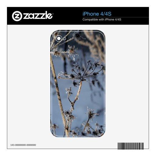 Piel del invierno iPhone 4S skins