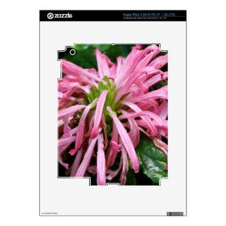 piel del iPad 3 - ciruelo brasileño blanco iPad 3 Skins