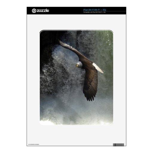 Piel del iPad de Eagle calvo y del animal salvaje  iPad Skin