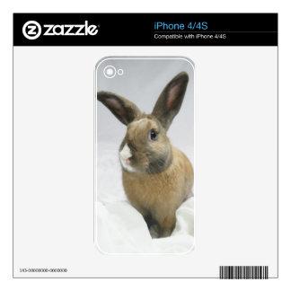 Piel del iphone 4/4S del conejo de conejito de MHR Skin Para El iPhone 4