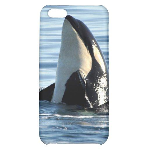 Piel del iPhone 4 de la orca