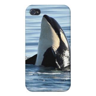 Piel del iPhone 4 de la orca iPhone 4 Carcasa